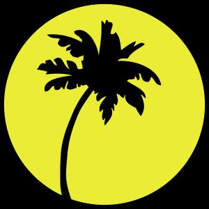 palm sun icon