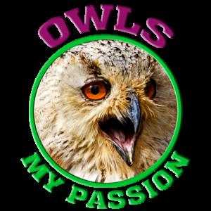 Eule Owl Nachteule Uhu Geschenk