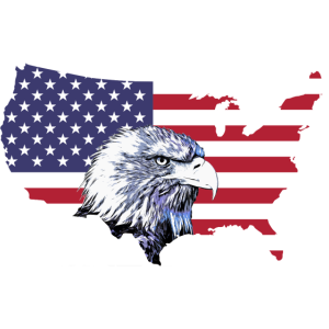 Weißkopfseeadler Adler USA Flagge Fahne Amerika