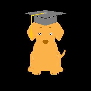 Hund Uni Universität Abschluss