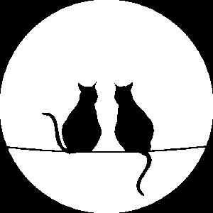 Katzen im Mondschein
