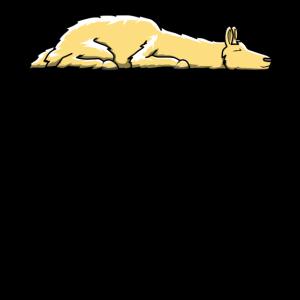 Lama Nein Schlafen Faul Alpaka Geschenk