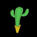 Tu te frottes à moi tu te frottes à un cactus