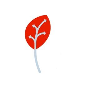 Adveris rosso