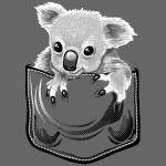 Koala pochette