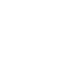 Meer Möwe Wasser Nordsee Ostsee Glaub Liebe w