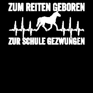 Reiten Pferd Reiter Schule Schüler Geschenk