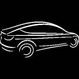 TM3 Tesla M3
