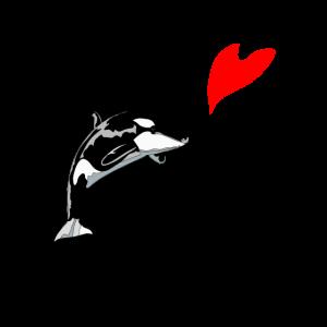 Orca Jumping Heart Balloon