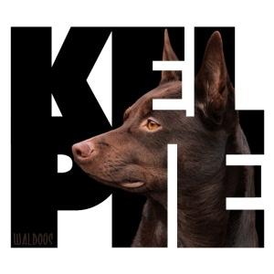 Kelpie II