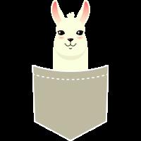 Alpaca In A Pocket