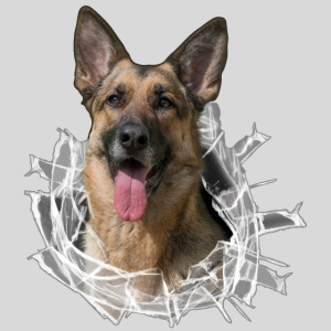 Schäferhund im Glas Loch