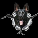 Schwarzer Schäferhund im Metall Loch