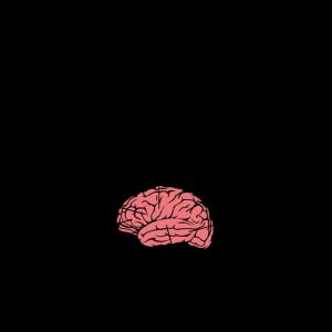 Brain of a medical student, Medizin Studium
