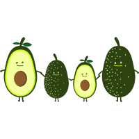 Avocado Familie