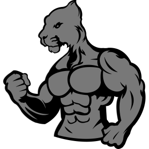 strong_jaguar_002