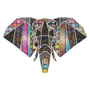 Eléphant symétrique couleurs