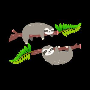 Süße Faultiere