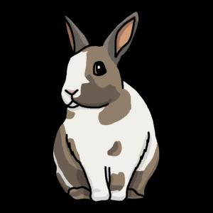 Hase, Kaninchen, süß, Comic