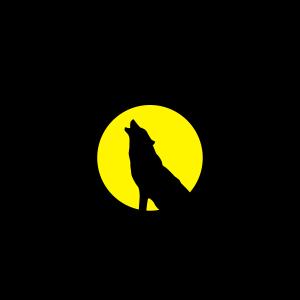 rudel fuehrer wolf