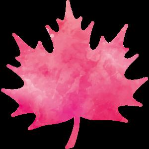 leaf pink wasserfarben