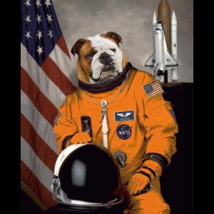 Englische Bulldogge Besitzer Liebhaber Astronaut