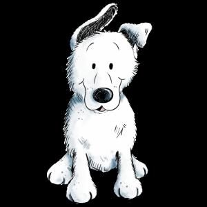 Weißer Schäferhund | Schweizer Schäferhund