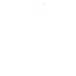 Herzschlag Silvester Pyro Heartbeat