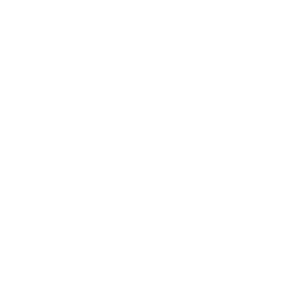 Mofa Evolution Moped