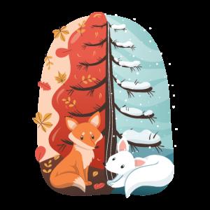 Füchse im Winter und Herbst comic Fuchs