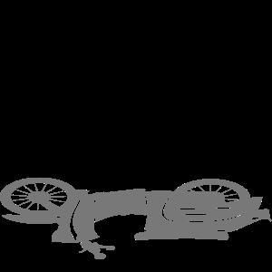 Fahrzeug - Schwalbe