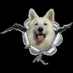 Schäferhund Weiss im *Metall-Loch*