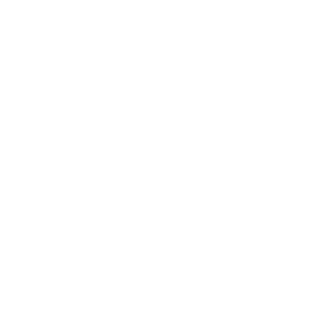Surfing Paradise