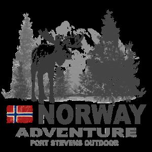Norway - Norge - Norwegen - Moose - Elch
