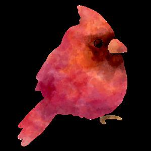 Süsser Vogel