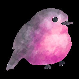 Schöner, bunter Vogel