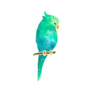 Schöner Vogel