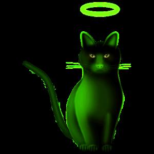 Katze mit Heiligenschein