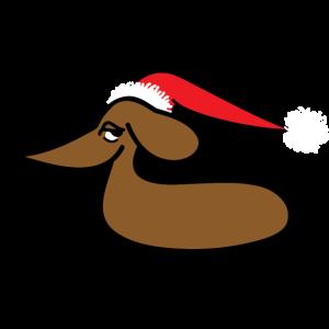 Dackel mit Weihnachtsmütze