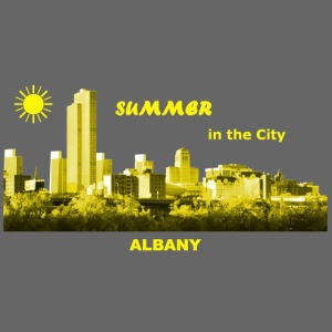 Summer Albany City New York