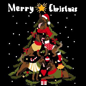 Malinois Weihnachtsbaum Hund Weihnachten