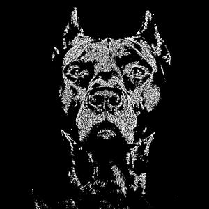 Bulldogge Kampfhund Staffordshire,Wachhund,Hunde