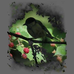 Petit oiseau dans la forêt