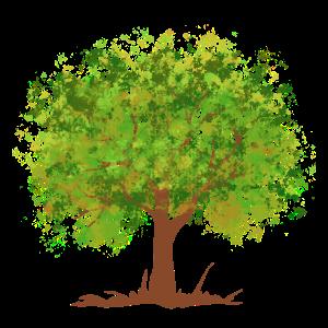 Sommer grüner Baum