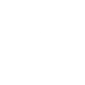 Zeichnung eines weißen Totenkopfschwärmers
