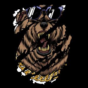 Cool Bear - Cooler Bär