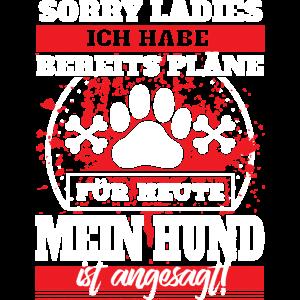 Hund - Sorry Ladies