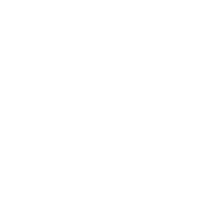 Viking - World Tour