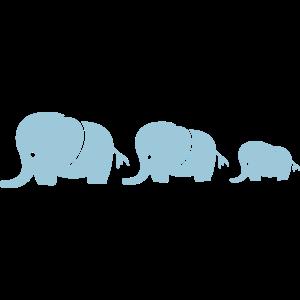 elefanten_familie