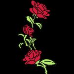 teschio_e_rose_es123_2